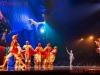 2013-cirque-du-soleil_willemdeleeuw-5