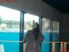 016-schrek-zoo